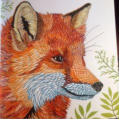 Coloring # The Menegerie: Animal Portrait to Colour # fox