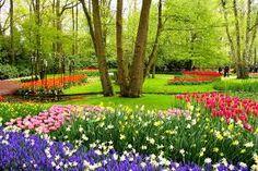 Image result for Spring in middelburg, Netherlands