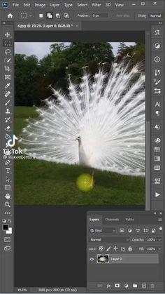 Photoshop Design, Photoshop Tutorial, Photoshop Video, Adobe Photoshop, Graphic Design Lessons, Graphic Design Tutorials, Graphic Design Posters, Inkscape Tutorials, Plakat Design