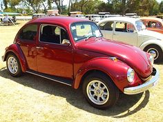 1971 VW Bug... Car game on long trips was to see how many VW's we could count.  The games pretty boring these days.
