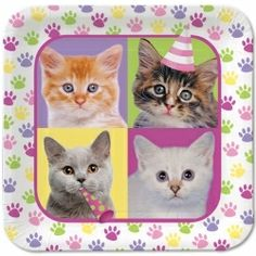 party supplies for cat theme