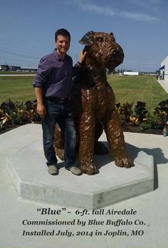 Huge Airedale statue - I want one in my yard!