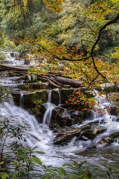 Appalachian Mountain Waterfall .