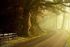 6. Hocking Hills Scenic Byway (State Route 374) Ohio