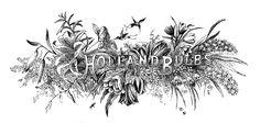 Álbum de imágenes para la inspiración