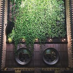 THIS JUST INN | It's Spring inside and out. Come enjoy the living walls of Salone NIco.