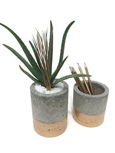 Concrete+Planter+with+Gold+Fade.+(Set+of+2.)+4″&5″.+FREE+SHIPPING!+Ready+To+Ship!