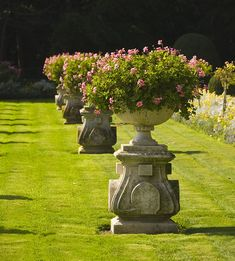 GardenDesigns+more: Potted Plants = Container Garden Formal Gardens, Outdoor Gardens, Container Plants, Container Gardening, Urn Planters, Garden Urns, Garden Ornaments, Plant Design, Dream Garden