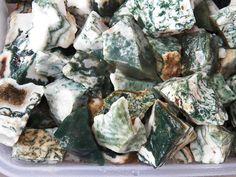 1/2 LB TREE AGATE Rough Rock for Tumbling Tumbler Stones  1100+ CARATS  FS