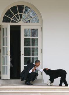 President's pal U. President Barack Obama bends down to pet his dog, Bo, outside the Oval Office of the White House in Washington on March Bo Obama, Barack Obama Family, Michelle Obama, First Black President, Mr President, Obama Photos, Presidente Obama, Barrack Obama, Black Presidents