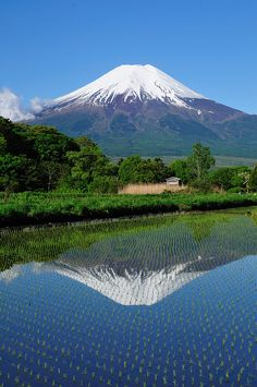 Mt. Fuji, Japan  I have been here. It is at least as gorgeous as this picture.