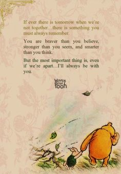 Winnie the Pooh is the smartest Disney bear ever (: