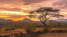 """Résultat de recherche d'images pour """"Ethiopie"""""""