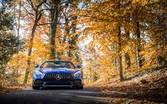 Download wallpapers 4k, Mercedes-AMG GT C Roadster 2018 cars, autumn, supercars, Mercedes