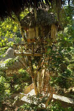 Dominican Tree House Village - Samaná, Dominican Republic