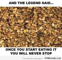 932778a575ea0b62e46f3d5672aa9df3 arabian nights arabic jokes best arab memes destination the arab world pmslweb pmslweb,Funny Arab Meme Airplane