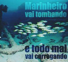 @Regrann from @ruamege - #marinheiros #umbanda #sabado #iemanja #ruamege…