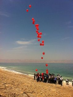 Dead Sea dying.    http://grist.org/news/fertilizer-companies-and-climate-change-are-killing-the-dead-sea/