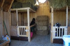 Goat barn idea, I like the stalls but would probably close them off completely with some sort of wire fencing.