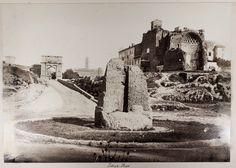 Meta Sudans 1870