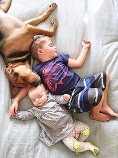 幼い兄妹と犬。仲良しトリオのお昼寝写真が反則級に可愛すぎる!