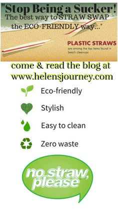 Stop being a SUCKER! Click to read The best way to STRAW SWAP the ECO-FRIENDLY way! A blog post full of different style, shape, size eco-friendly straws to choose from. #ecofriendlystraws #plasticstraws #strawalternatives #paperstraws #bamboostraws #glassstraws #stainlesssteelstraws #greenliving #naturalliving #siustainablestraws #plasticfree Friendly Plastic, Stainless Steel Straws, Suckers, Natural Living, Life Lessons, Eco Friendly, Encouragement, About Me Blog, Positivity