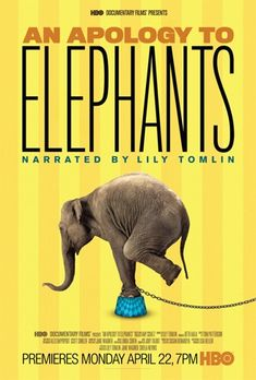 """It is on HBO.don't miss it O's """"An Apology To Elephants"""" premieres April Boston Marathon runner's mad dash for PAWS; Drive-by shooting of circus elephant; In memoriam, Ravi the tiger; ARK 2000 May Open House! Elephant Poster, Elephant Love, Elephant Stuff, Elephant Art, Cane Corso, Sphynx, Chinchilla, Wild Life, Peta"""