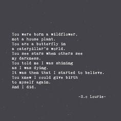 S.C Lourie ~ butterfliesandpebbles