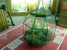 conical stained glass terrarium