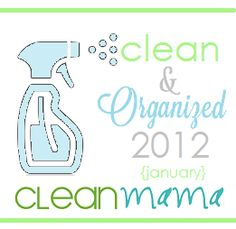 Clean and Organized in 2012? Let's do it...