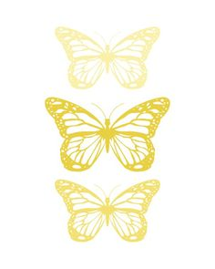 Spring-Butterfly-Yellow