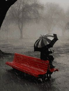 (via Debbe Sanders-Evero) Waiting  in the rain. (I don't think it's fun...)
