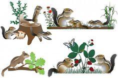 Family of chipmunks #vector #animal #wild #collection #mammal #herbivore #zoo #america #american #chipmunk