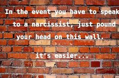 Speaking to a narcissist....might as well bang my head on a brick wall. It's easier.