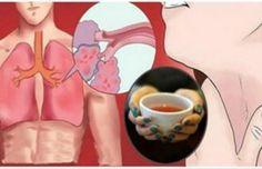 1 – Liquirizia (Glycyrrhiza Glabra): Famosa in tutto il mondo, è una pianta medicinale che aiuterà i polmoni e favorirà la salute della