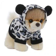 O cãozinho mais fofo do mundo super estiloso de suéter de leopardo