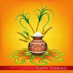 sankranthi (pongal) image collections for free Wallpaper Pictures, Hd Wallpaper, Nature Wallpaper, Happy Sankranti Images, Sankranthi Wishes, Pongal Images, Profile Picture Images, Happy Pongal, Free Wedding Invitation Templates