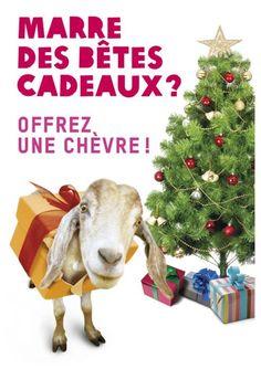 Marre de faire la file dans les magasins ? Commandez vos #cadeaux sur oxfamsemballe.be #Oxfamsemballe #Noel #OxfamUnwrapped