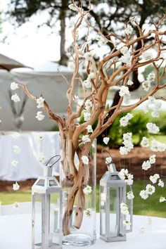 Branch centerpiece with hanging flowers and lanterns