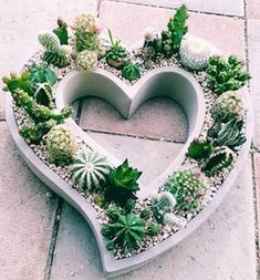 How to Create Modern Cement PlantersYou can find Cement planters and more on our website.How to Create Modern Cement Planters Cement Art, Concrete Pots, Concrete Crafts, Concrete Planters, Ceramic Planters, Modern Planters, Ceramic Flower Pots, Concrete Garden, Cactus Flower