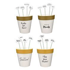 Quoted Planter Pot & Stakes Set