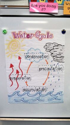 water cycle for 2nd grade   visual of the Water Cycle for my second grade class.   Science