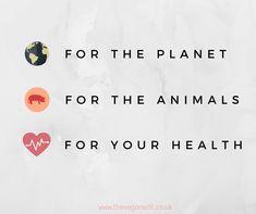 For your peace of mind ✌️✨ #vegan #veganism #veganquotes