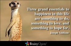 Three grand essentials to happiness in this life are something to do, something to love, and something to hope for. - Joseph Addison