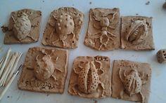 Lieveheersbeestjes en andere kevers boetseren (kinderkunstcursus)