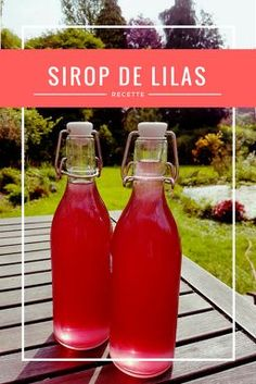 Recette sirop lilas, lilac sirup, fleur comestible, lilas,