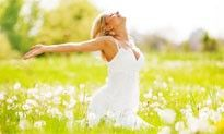 content-Harness the energy Feng Shui