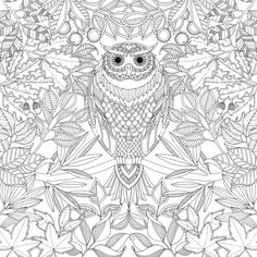 Over one million people bought her gorgeous coloring book for grown ups - Page 2 of 2