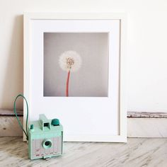 Are you interested in our Dandelion Clock Print? With our Minimal Floral Photograph you need look no further.