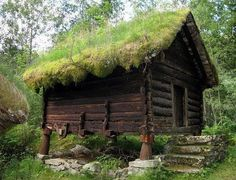 Beautiful cabin with moss roof.